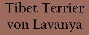 Willkommen bei Tibet Terrier von Lavanya